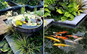 Most effective method to Buy a New Garden Pond Pump in Easy Steps